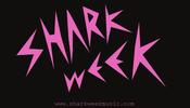 Image of Shark Week Logo Sticker