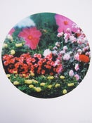 Image of shanghai floral abunda