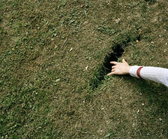 Image of Gwynne Johnson - Untitled (Hand in Grass)