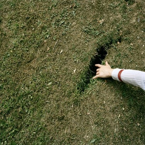Image of Gwynne Johnson - Untitled (Hand in Grass)