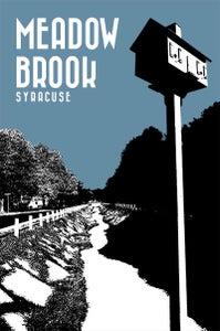 Image of meadowbrook neighborhood print