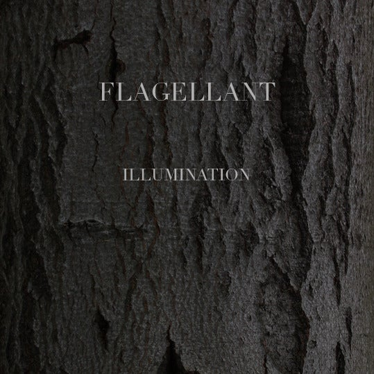 Image of Flagellant - Illumination 7""