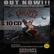"Image of GUTFUCKED 'FUCKED TO DEATH"" OUT NOW"