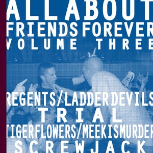 "Image of ALL ABOUT FRIENDS FOREVER VOLUME THREE 7"" w/zine"
