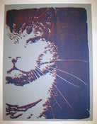 "Image of MJL "" Sparky Grey"" Poster Print 2012"