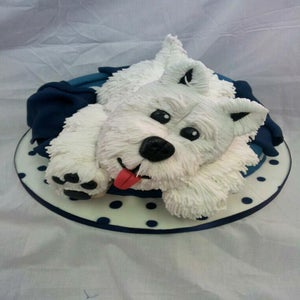 Image of Online Sugarcraft tutorials. BACK CATALOGUE. Cake classes in Carlisle
