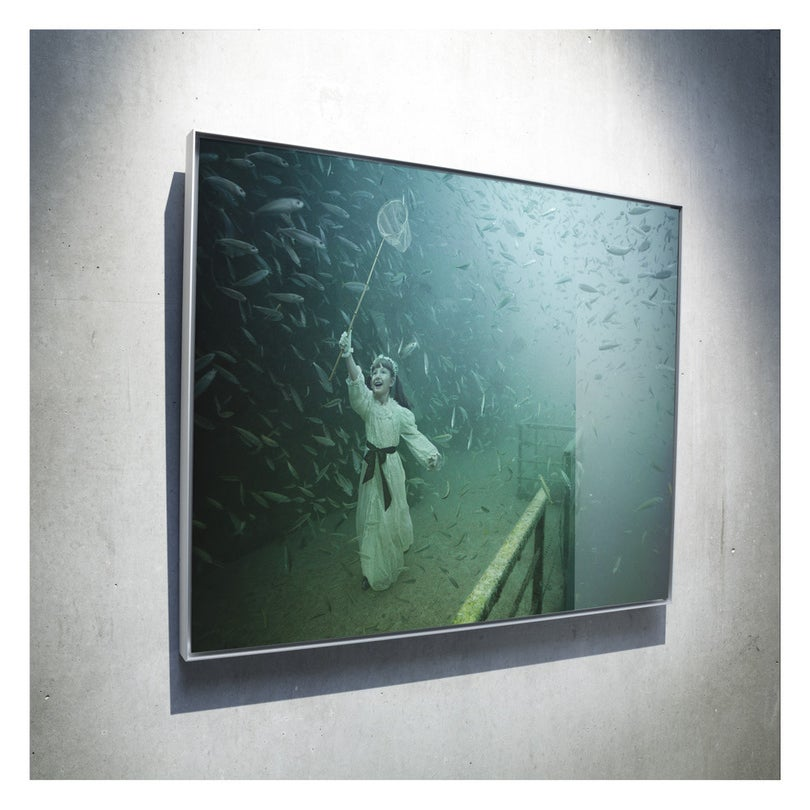 Image of Limited print mounted on aluminum with acrylic face and an aluminum frame / VANDENBERG PROJECT