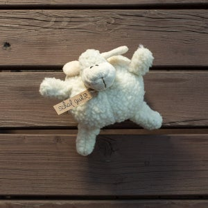 Schafspieluhr