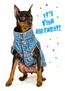 Image of It's Your Birthday