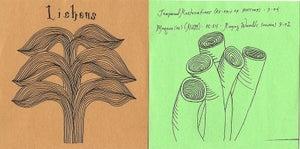 "Image of Lichens ""Tanith"" ltd. ed. CDR"