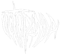 Octopanda