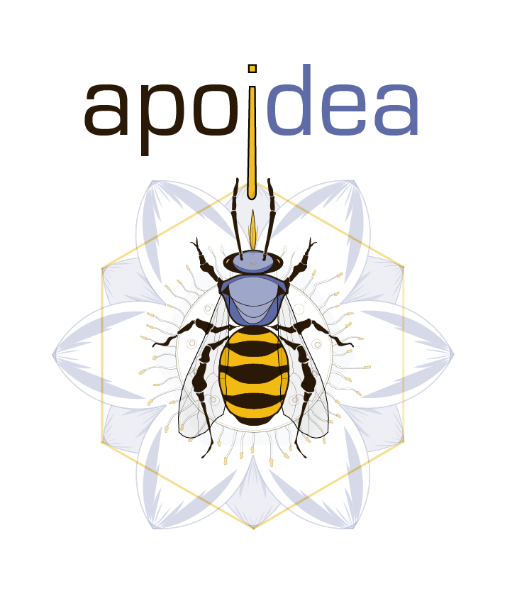 apoidea apiary