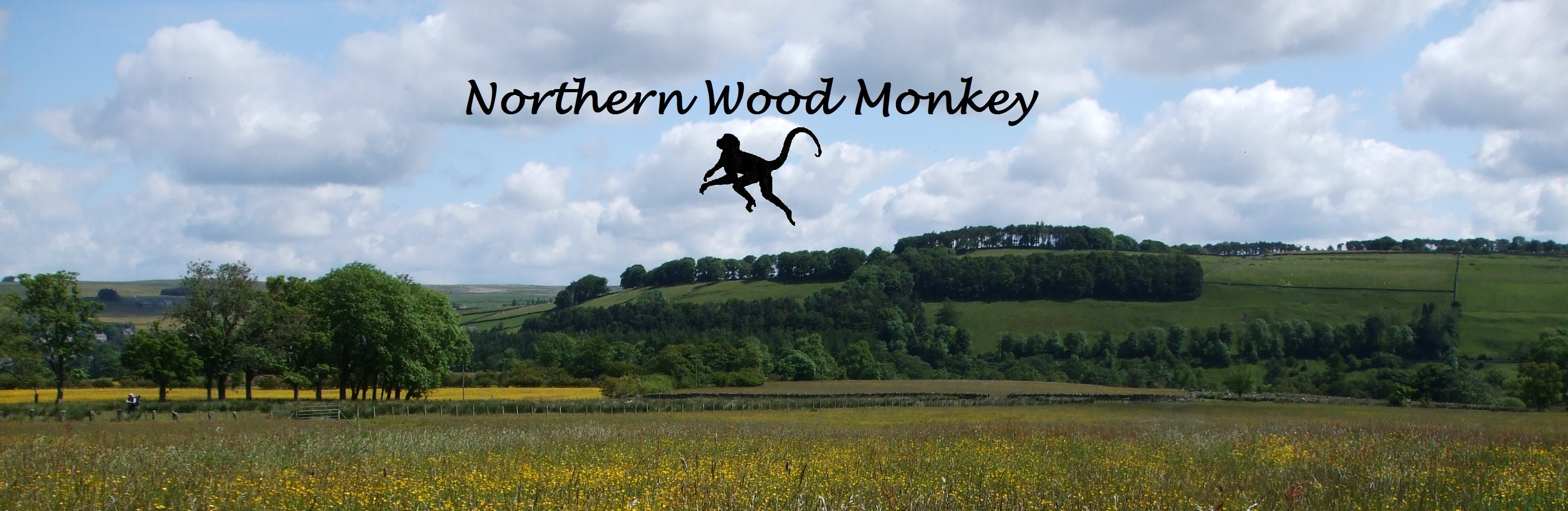 Northern Wood Monkey