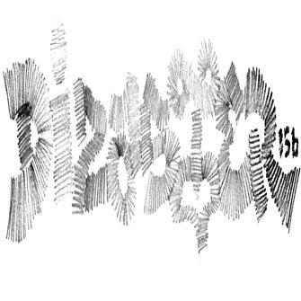 DIZASTER156