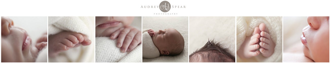 Audrey Spear Photography