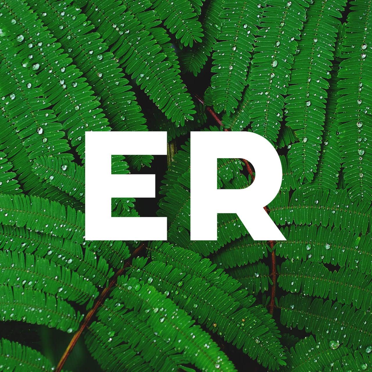ER - graphiste web & print