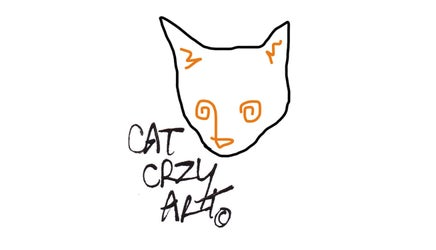 Cat Crzy Art