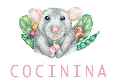 Cocinina