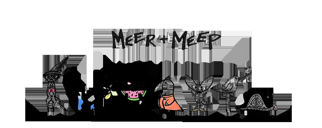 MEER + MEEP