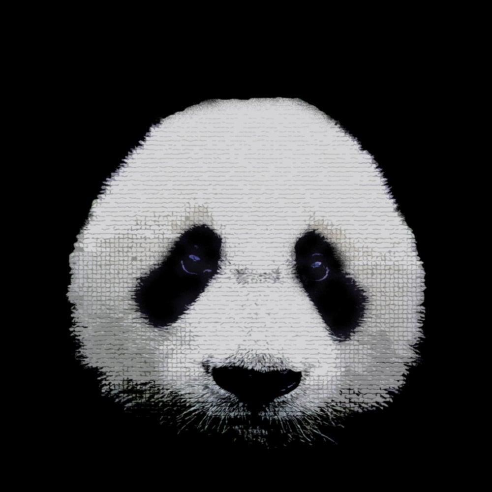 Panda Panda! Online Store