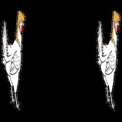 Mullet Chicken