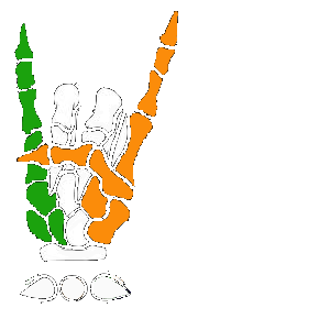 Irish Metal Archive